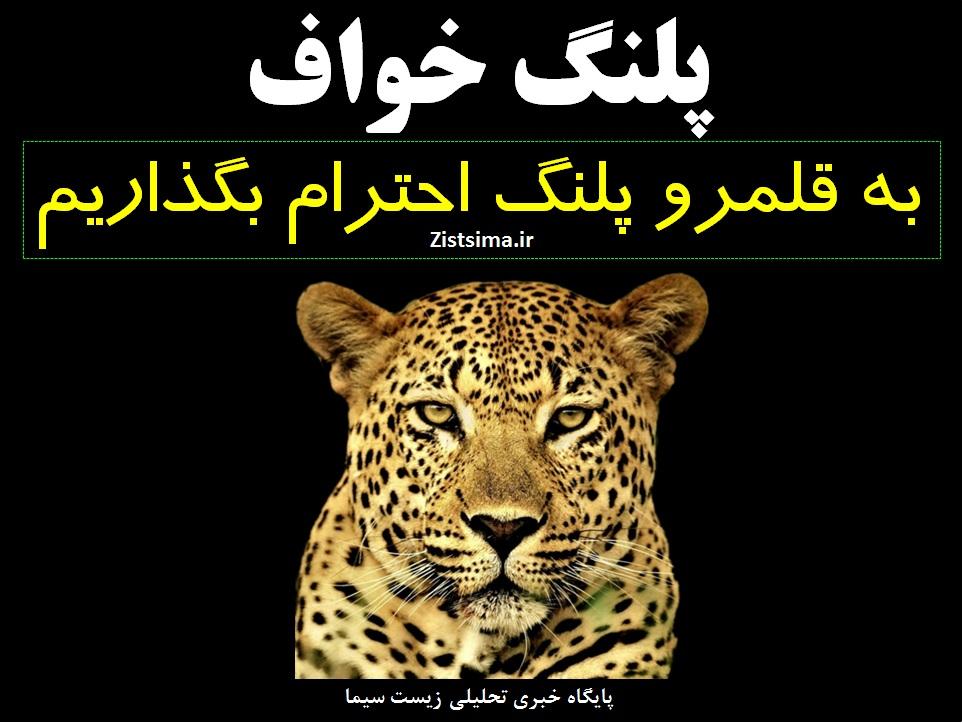 پلنگ معدن سنگان شهرستان خواف در استان خراسان رضوی