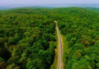جنگلهای هیرکانی در گستره ۵ استان شمالی بر دامنه البرز