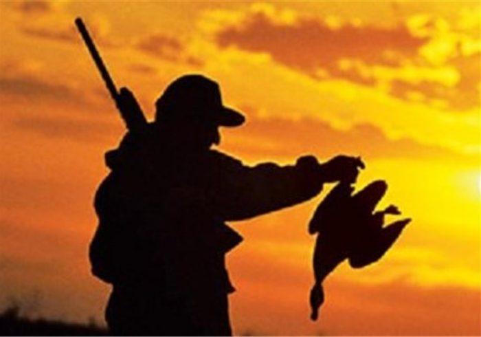 کشف لاشه ۱۶ قطعه مرغابی اجزای بدن ۶ قلاده روباه در شهرستان مانه و سملقان