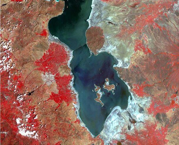 جزایر دریاچه ارومیه به هم متصل شدند/ زندگی حیات وحش در خطر