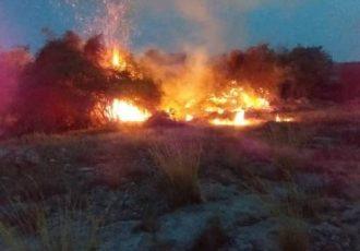 آتش به جان منطقه حفاظت شده باشگل تاکستان افتاد
