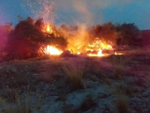 اطفاء کامل آتشسوزی در مراتع مشرف به جنگلهای ارسباران